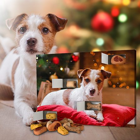 """Foto-Hunde-Adventskalender """"Leckerli"""""""