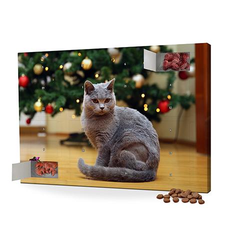 "Foto-Katzen-Adventskalender ""Leckerli"""