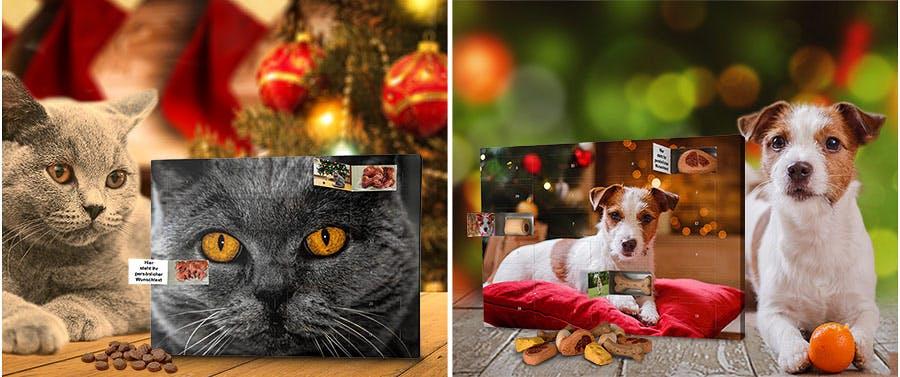 Adventskalender für Hunde und Katzen