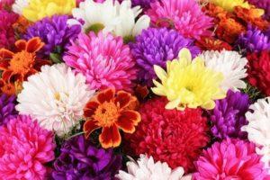 Tischdeko aus Chrysanthemen basteln