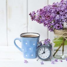 Wann blühen welche Blumen?