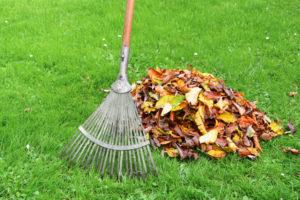 Tipps Und Tricks Für Den Outdoor Frühjahrsputz