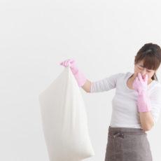 Ratgeber: Kopfkissen richtig waschen