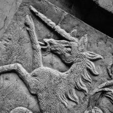 Das Einhorn: Die Herkunft und Bedeutung des Fabelwesens